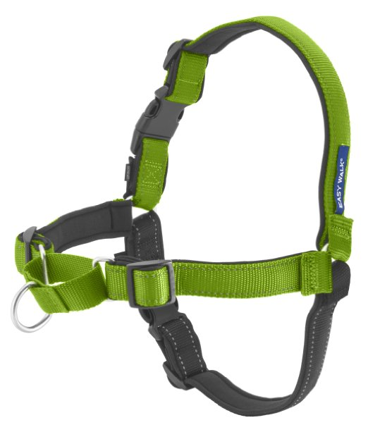 No-pull harness