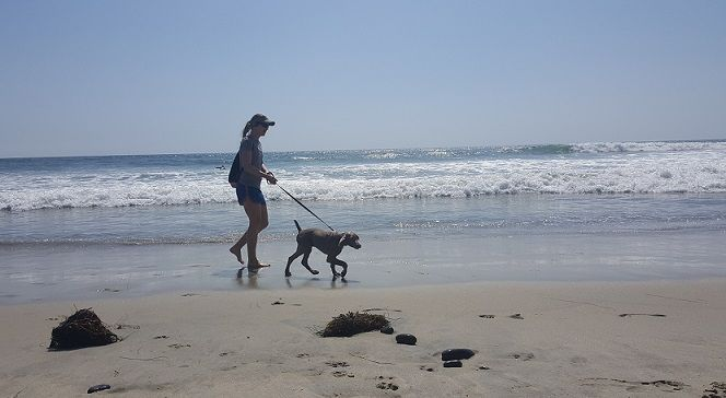 Me and my puppy Remy walking on the beach - How far can I walk my 6 month puppy?