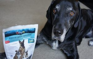 Support A Local Dog Rescue While Helping Dogs With Itchy Skin & Joint Pain!