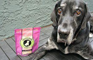 Green Bark Gummies Dog Treat Giveaway – 10 Winners