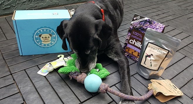 That Mutt dog subscription boxes from Truly Pawsome