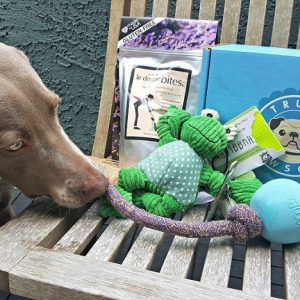 Limited Edition That Mutt Dog Subscription Boxes from Truly Pawsome