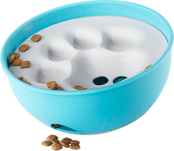 PAW5 Rock 'N Bowl Review and Giveaway