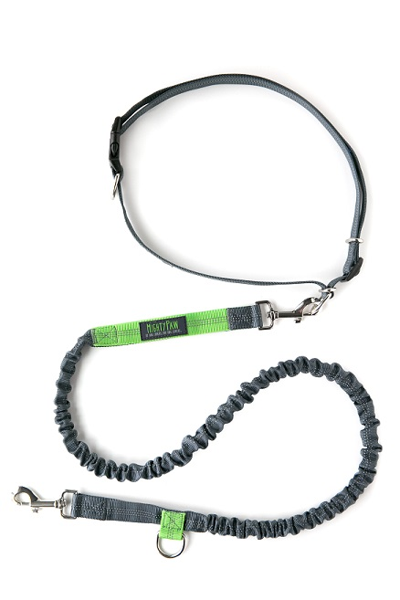 Mighty Paw hands free bungee leash