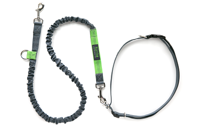 Mighty Paw hands free bungee leash review