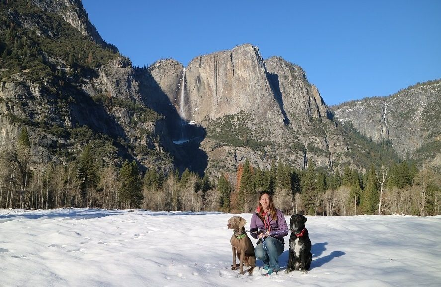 Our Road Trip to Yosemite and Merry Christmas!
