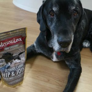 The Missing Link Supplements for Dogs Review and Giveaway