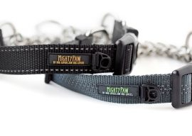 Mighty Paw Martingale Dog Collar Review