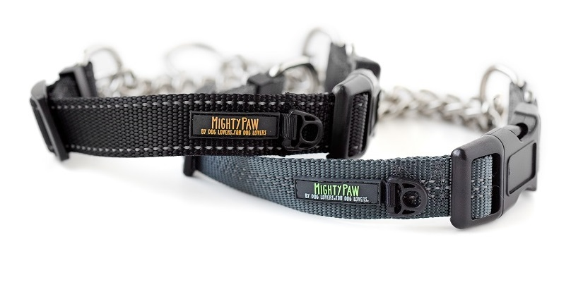 Mighty Paw martingale dog collar