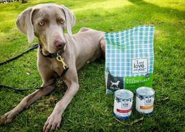 I and Love and You Dog Food Review and Giveaway