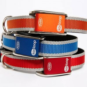 Kooloop Dog Collar Review and Giveaway