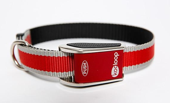 Kooloop dog collar review