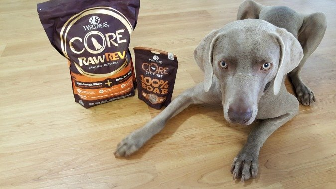 Wellness CORE RawRev Dog Food Review and Giveaway
