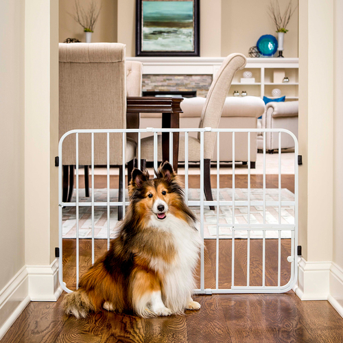 Carlson Pet Products pet gate