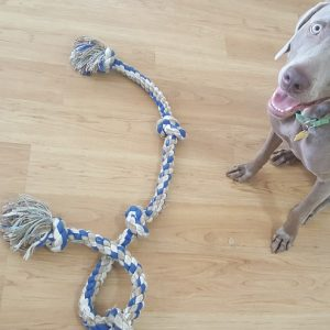 Durable Rope Toys for Dogs