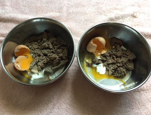 Primal patties with raw egg