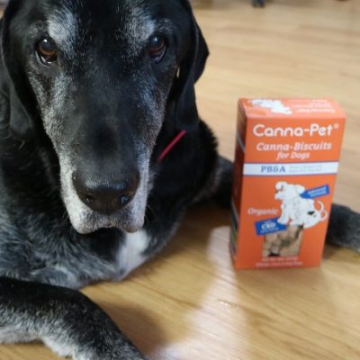 CBD Dog Treats – Canna-Pet Review and Giveaway