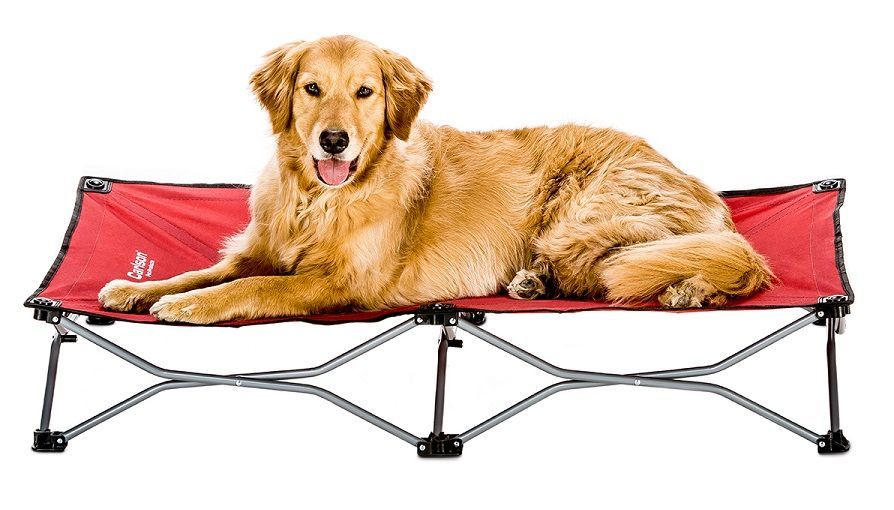 Carlson Pet Products portable dog bed