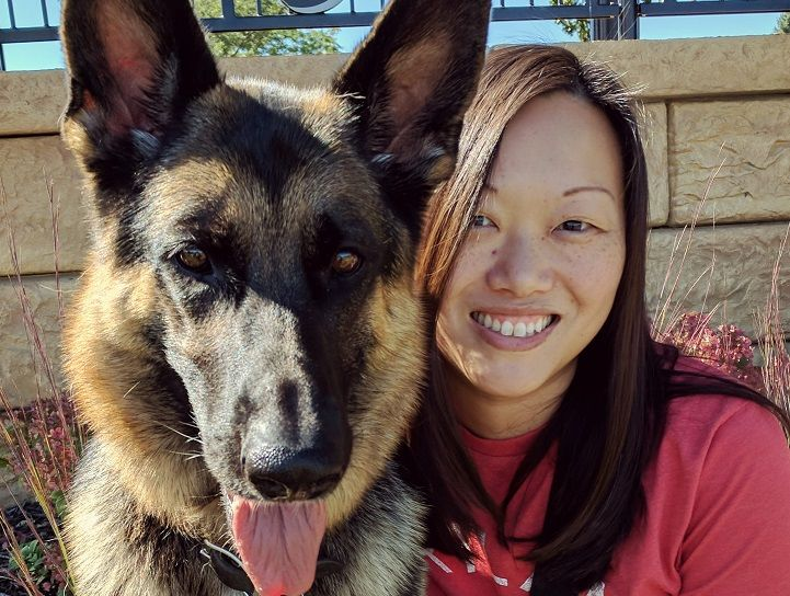 5 Questions With A German Shepherd Owner