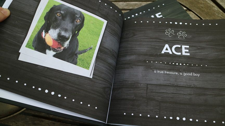 Put me in the story - personalized dog books