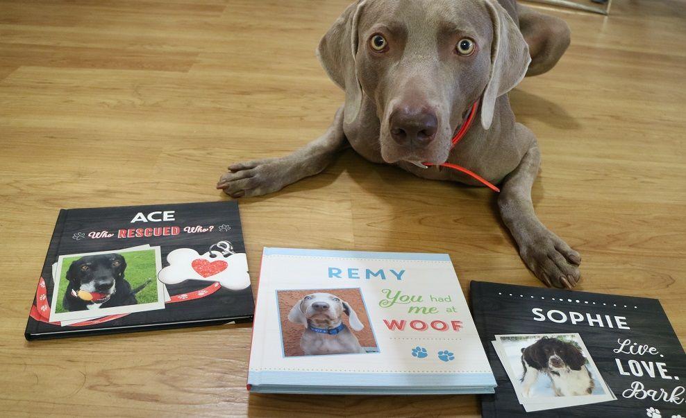 Personalized dog books