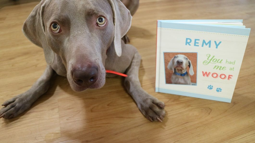 Personalized Dog Books – Put Me in the Story Review