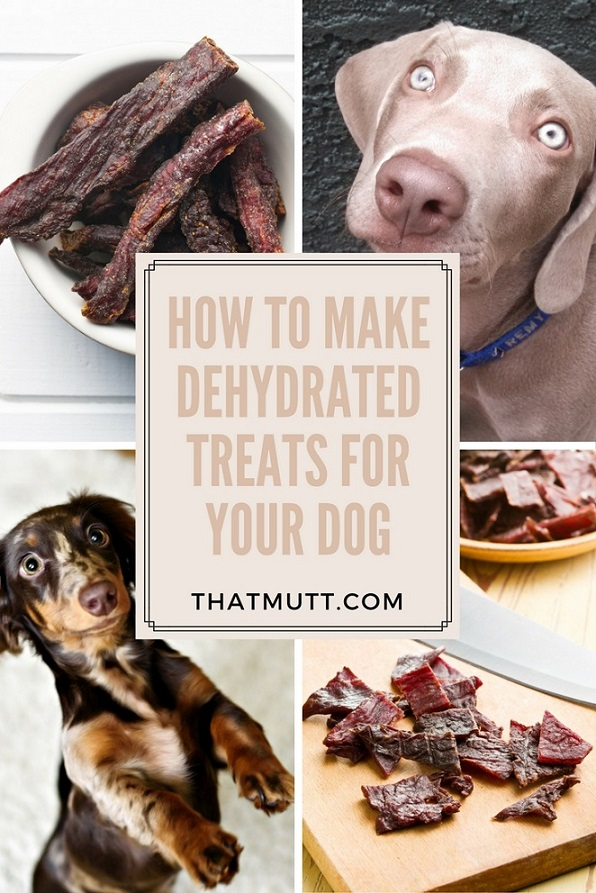 How to make dehydrated dog treats for your pup!