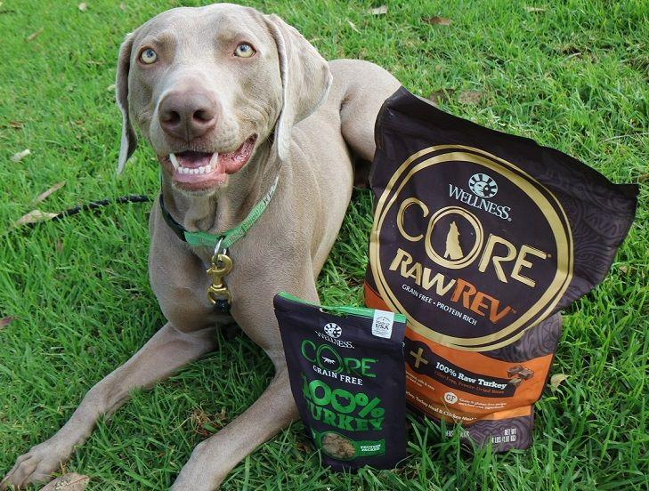 Wellness CORE freeze-dried raw treats review