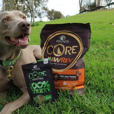 Wellness CORE Freeze-Dried Raw Treats Review & Giveaway!