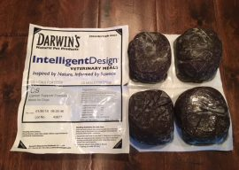 Darwin's Raw Dog Food Cancer Support Formula