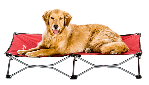 Red portable dog cot from Carlson Pet Products