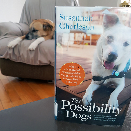 The Possibility Dogs by Susannah Charleson