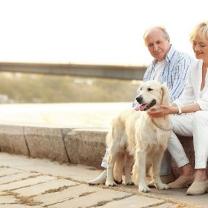 Helping Seniors Take Care of Their Dogs