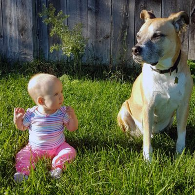 Tips for Adopting a Dog When You Have Young Kids