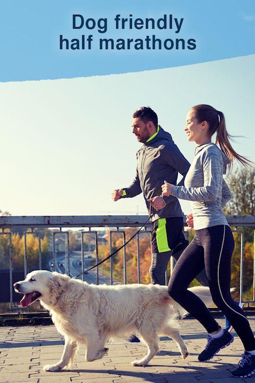 Dog friendly half marathons
