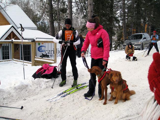 Ski racing with dogs